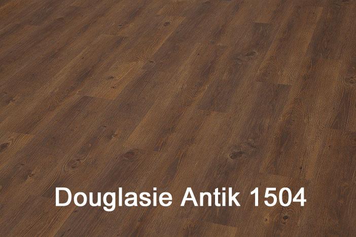 Douglasie Antik